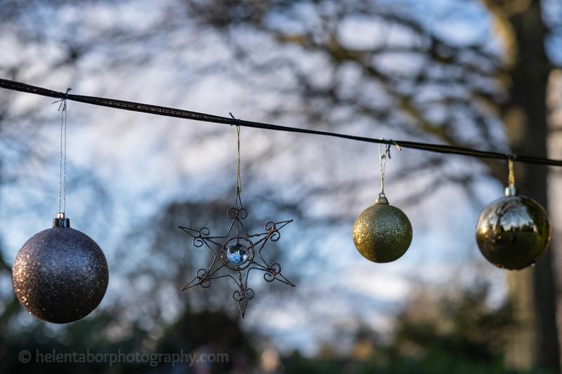 Winter Wonderland daytime-23.jpg