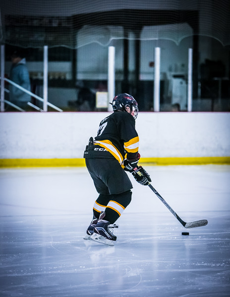 Bruins2-10.jpg