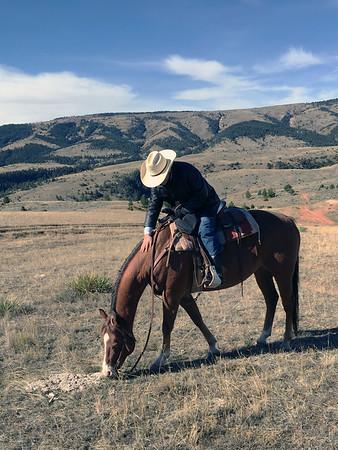 2017 Dryhead Ranch, Montana
