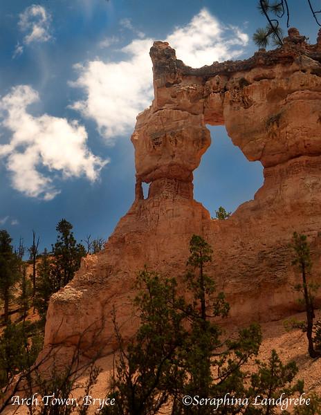 DSC_5231 Arch tower.jpg