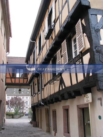 Alsace 2008