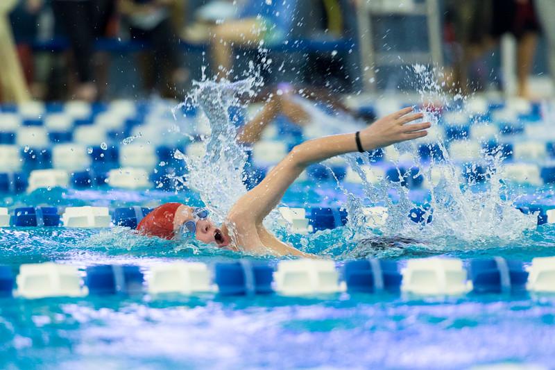 KSMetz_2016Nov30_0808_SHS Swimming_Meet 1.jpg