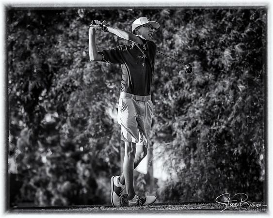 2017 Mountain Pointe Boys Golf