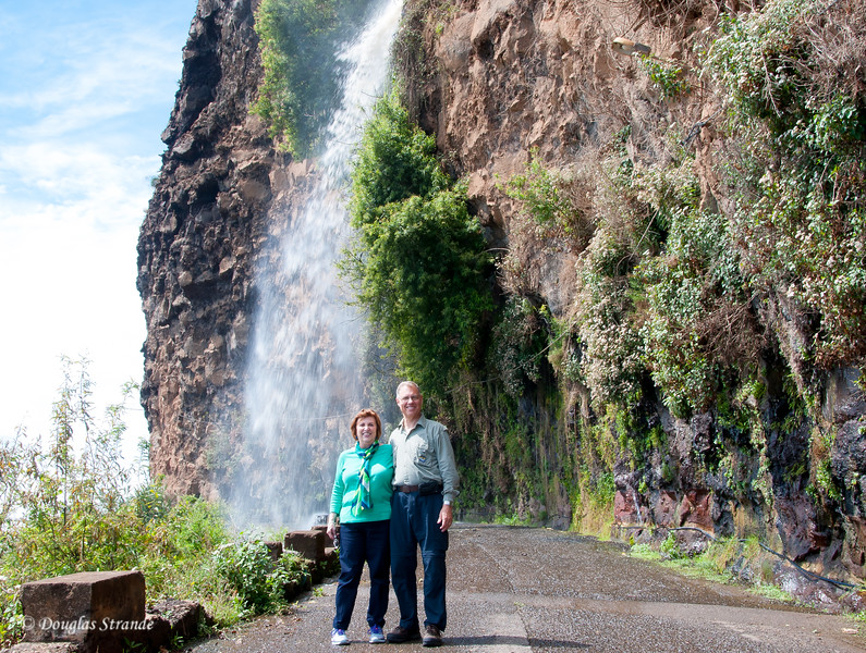 Island of Madeira - on the old road