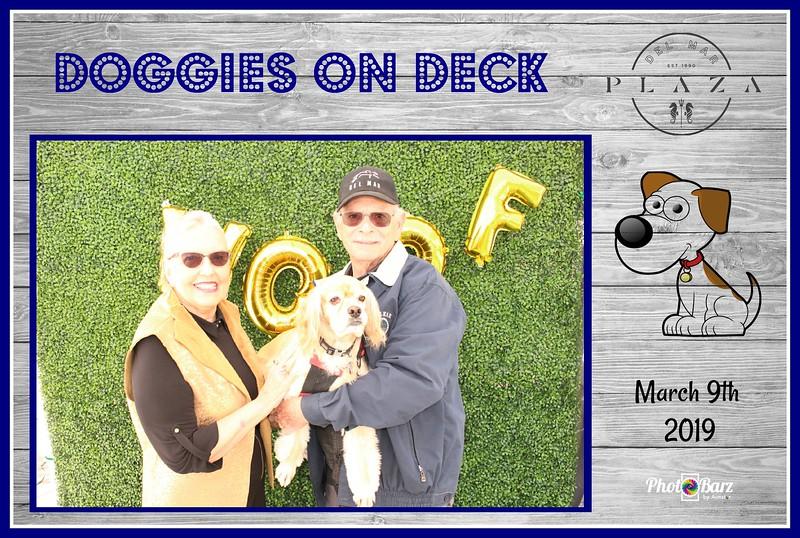 Doggys on Deck28.jpg