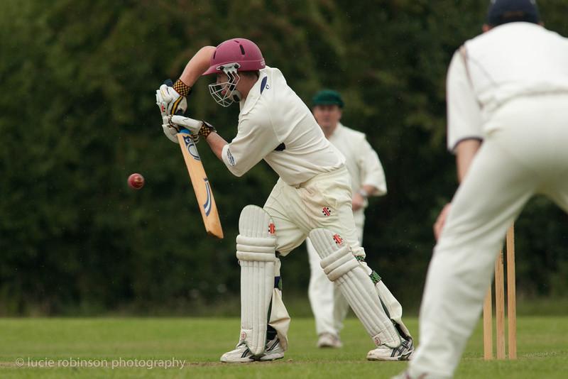 110820 - cricket - 167-2.jpg
