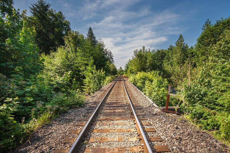 Brandywine Tracks