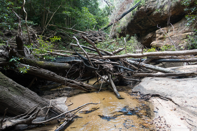 Log jam - plenty of these from the floods of Feb 2020
