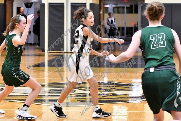 Berks Catholic vs Trinity Girls JV Basketball 2017 - 2018