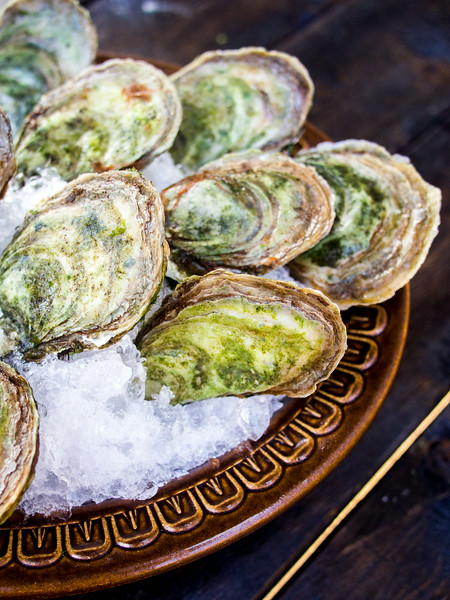 oysters unshucked on ice 2.jpg