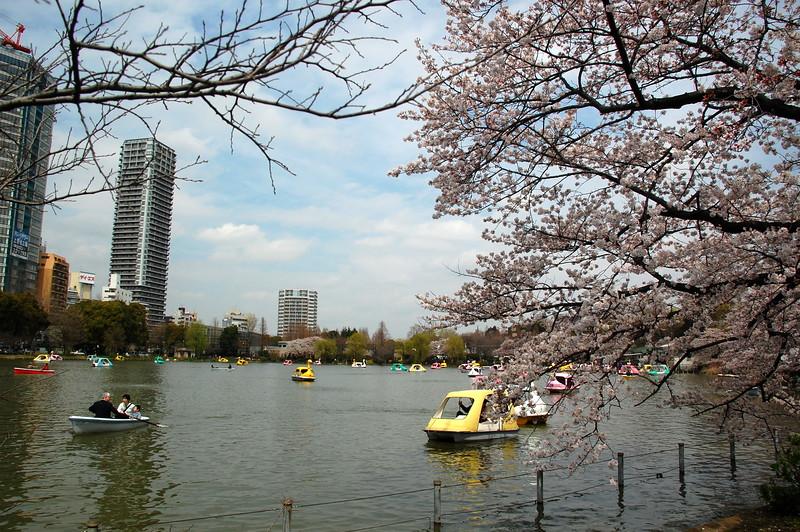 19-Japan10_1019.JPG