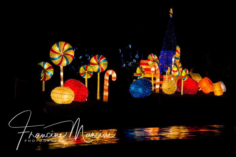 2018  SONY lanterns_196.jpg