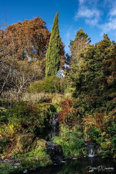 Wakehurst_Autumn-6085.jpg