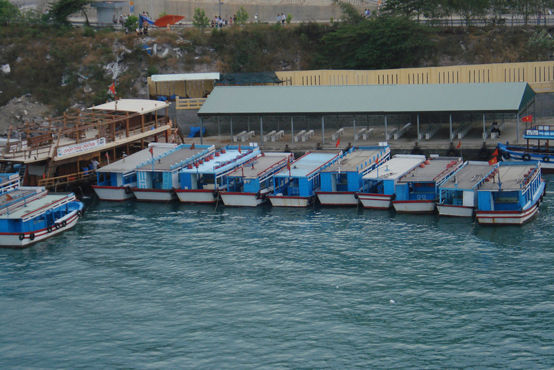 Dive and Snorkle Boats.jpg