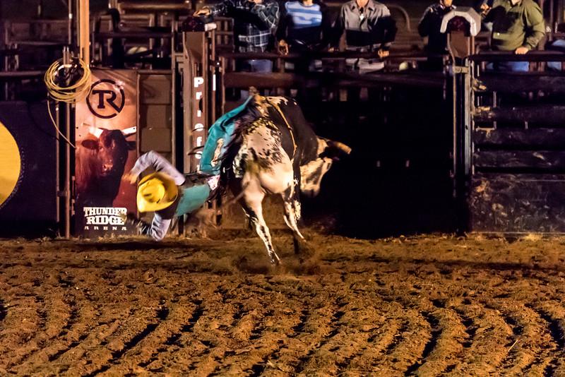 big-cedar-rodeo-279.jpg