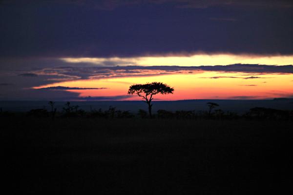 Kenya Vistas