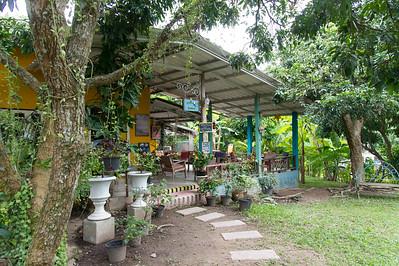 Little Yellow Coffee House
