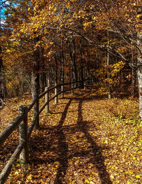 High Rollways Walk