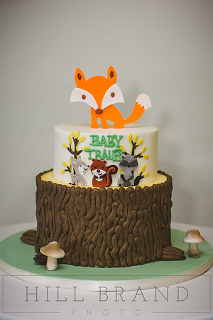 Baby Traub Shower