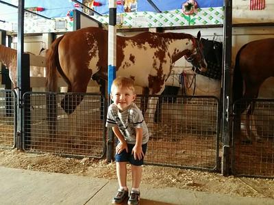 Lorain County Fair 2014