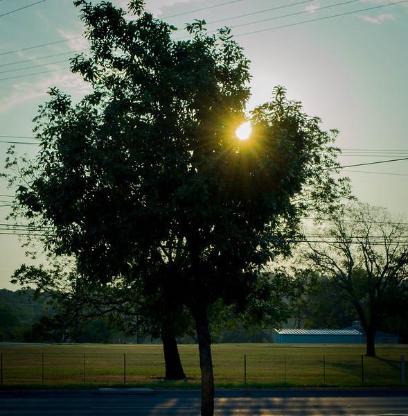 Sunrise 14-1.jpg