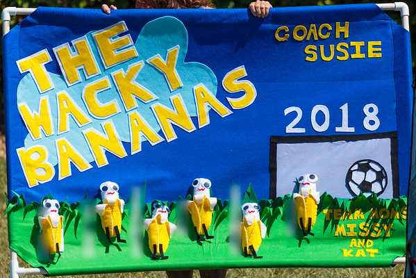 Lucky Emeralds vs. The Wacky Bananas