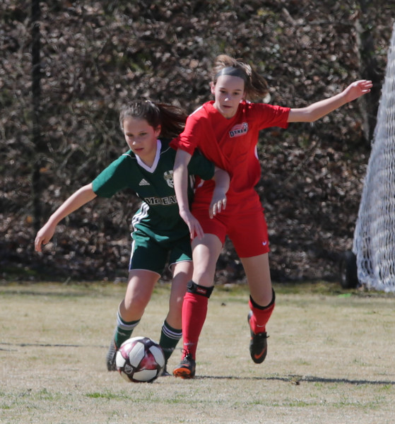 Dynamo 2006g vs Mclean Green 031619-32.jpg