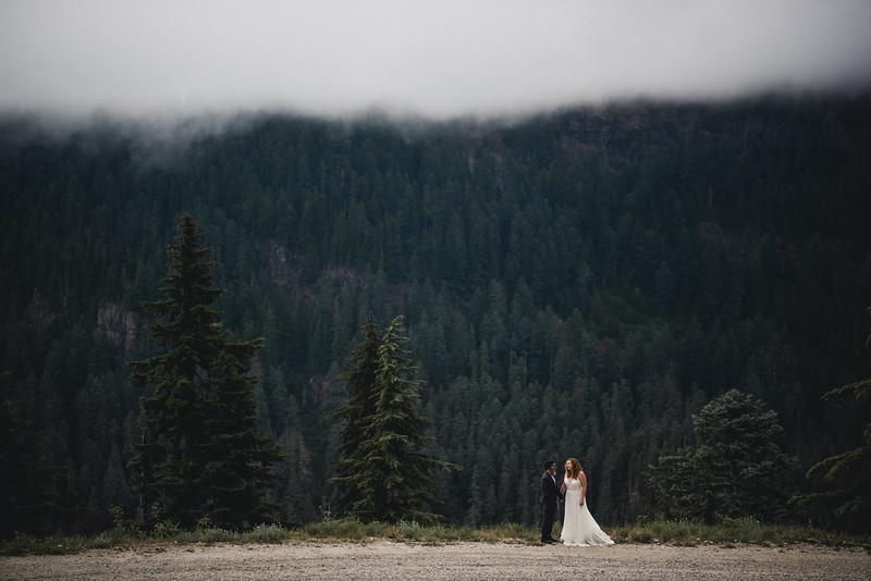 Travel Adventure Wedding Photographer - Mt Rainier - Rose-31.jpg