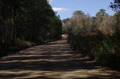 Dirt Roads of Berrien County