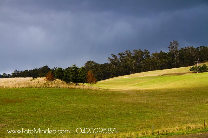 Huon Valley, Tasmania, Australia
