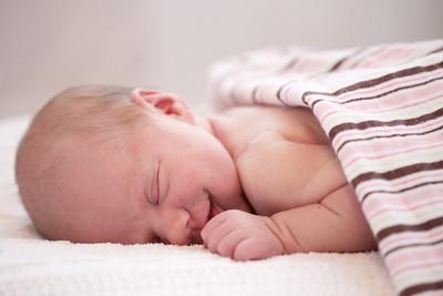 Cuda Newborn
