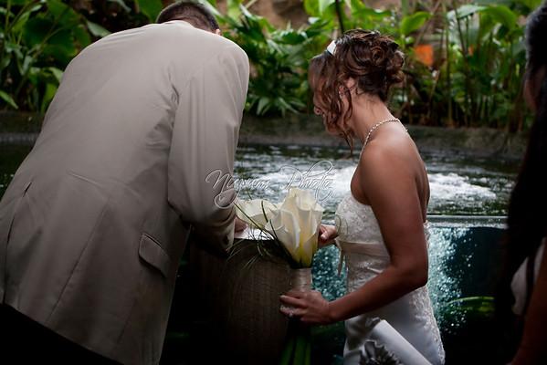 Marriage License - Jaime and Sasa