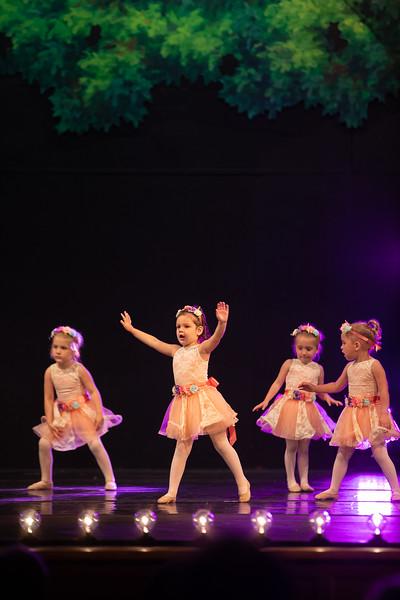 Dance Productions Recital 2019-332.jpg