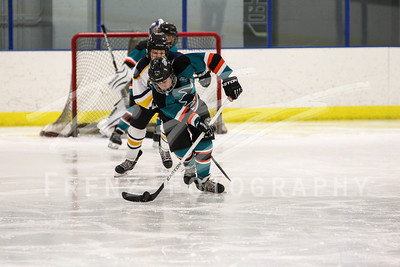 Gm 034 Sat 450pm NHL1 Peewee White Sabres Sharks