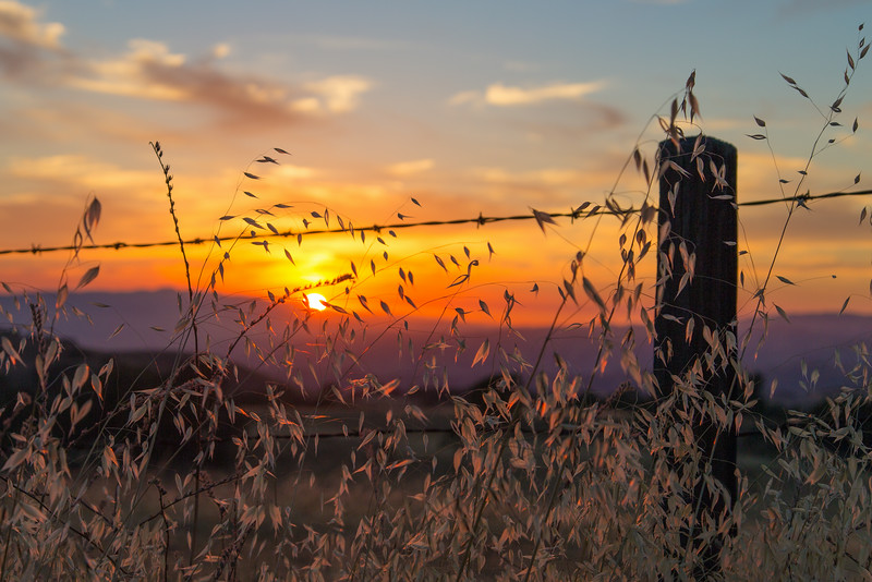 Sunset from behind the fence.