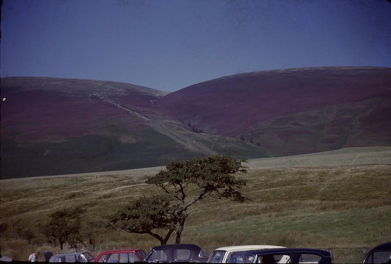 1964 08 Heather on the Hill scotland.jpg