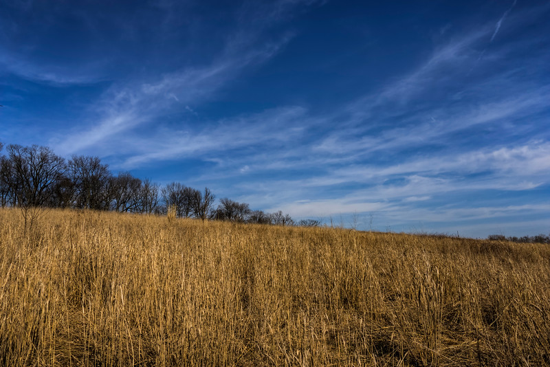 Earth and sky in the grasslands area between the forest and parkng lot at Reed Run Nature Preserve.