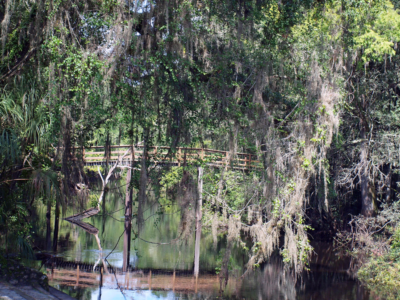 Hillsborough River State Park, FL