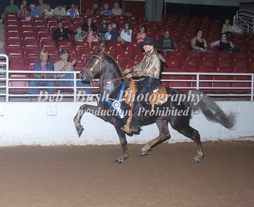 CLASS 92   COUNTRY SHOW PL STAKE