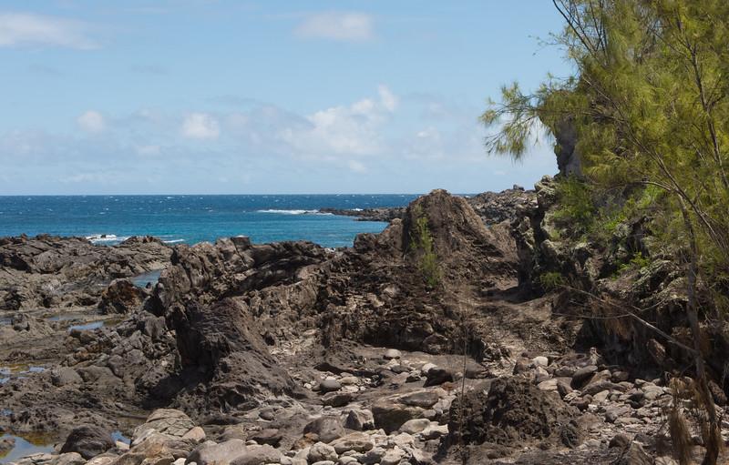 hawaii_0081.jpg