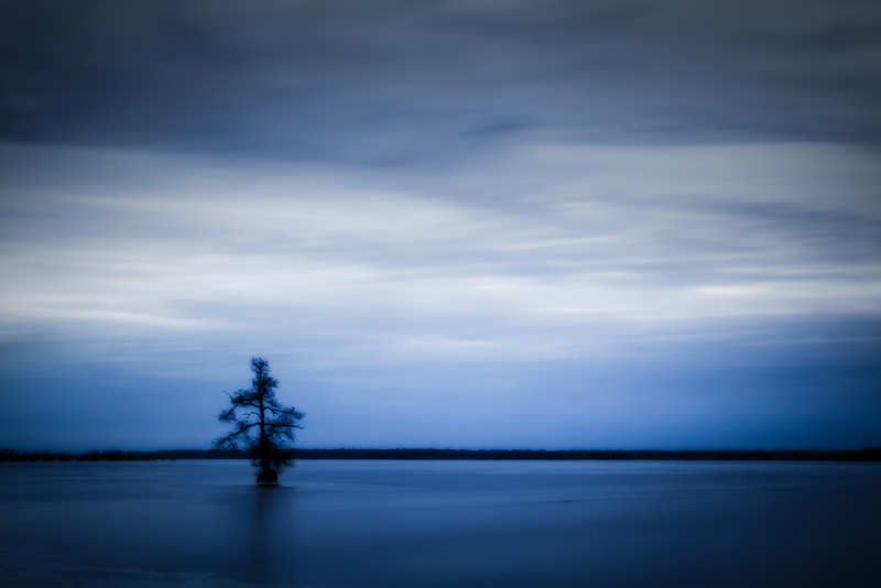 20140124Reelfoot020-Edit-Edit.jpg