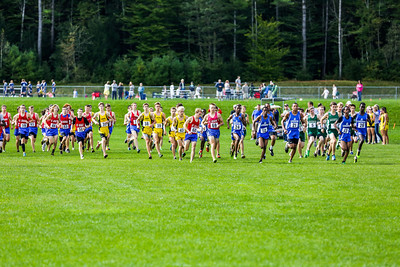 2013 Mt. Ararat X-Country Meet