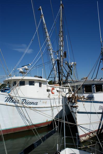 Campaign, Shrimp Boat 039.jpg
