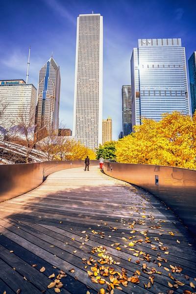 fall (1 of 1)-7.jpg
