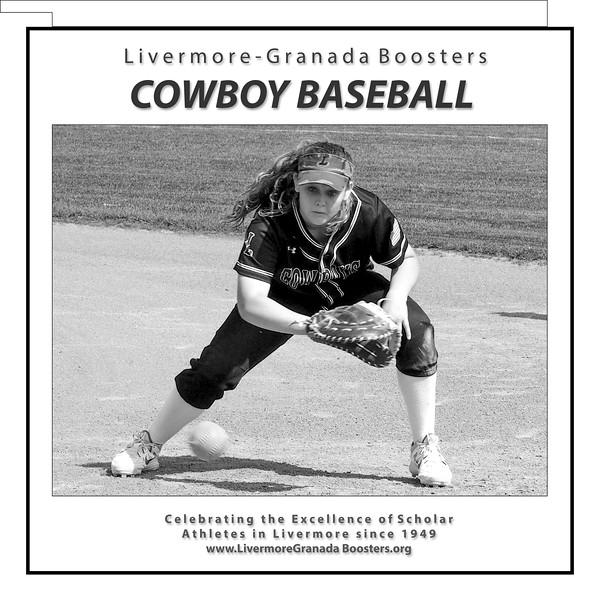 Baseball - LHS - 01.jpg
