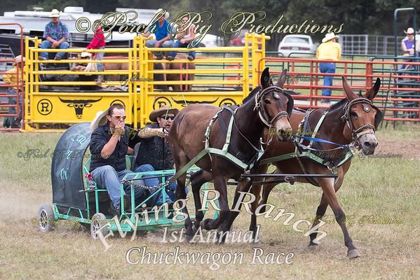 Big Mules Flying R Ranch