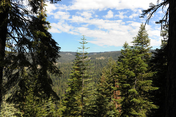 Sequoia and Kings Canyon National Parks (July 2009)