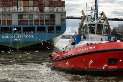 2013 09 19 Hamburg im September