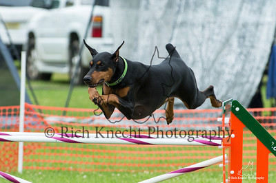 JAG AKC Agility Trial June 14-16