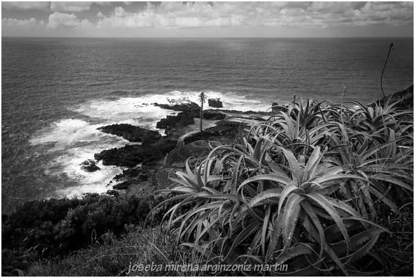 2012 Região Autónoma dos Açores